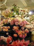 s-お花たち2♪