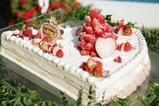 ビッグショートケーキ